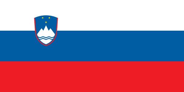 Recupero Crediti Slovenia: recupera i tuoi crediti in Slovenia