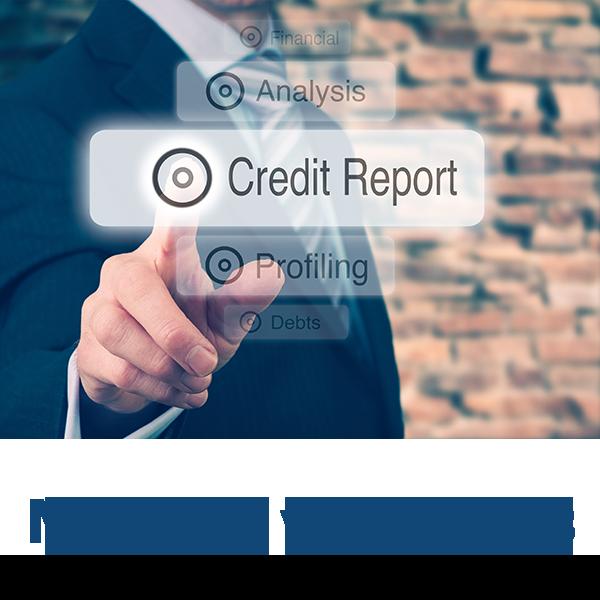 Tutela del Credito, Credit Manager